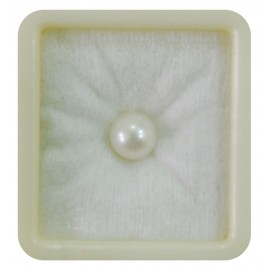 Pearl South Sea 5+ 3ct