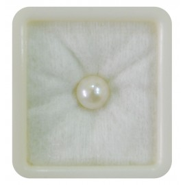 Pearl South Sea 5+ 3.1ct