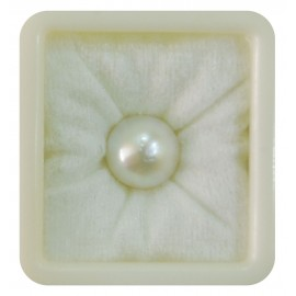 Pearl South Sea 14+ 8.75ct