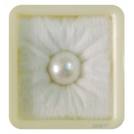 Pearl South Sea 14+ 8.4ct