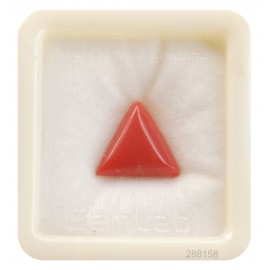 Natural Certified Coral Triangular 9+ 5.55ct